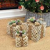 The Christmas Workshop 70289 - Juego de...
