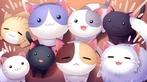 fondo-de-pantalla-gatos
